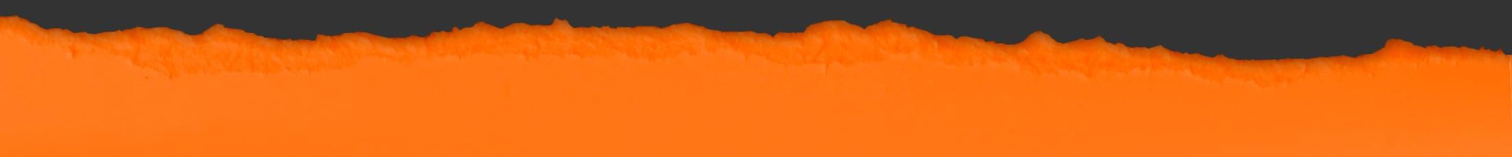 cic- rip orange-grey-top