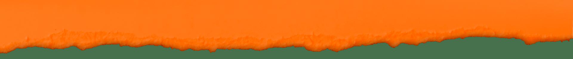 cic- rip orange2